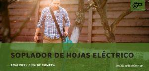 mejor soplador de hojas eléctrico